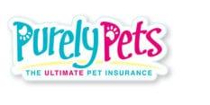 Pet Insurance 2